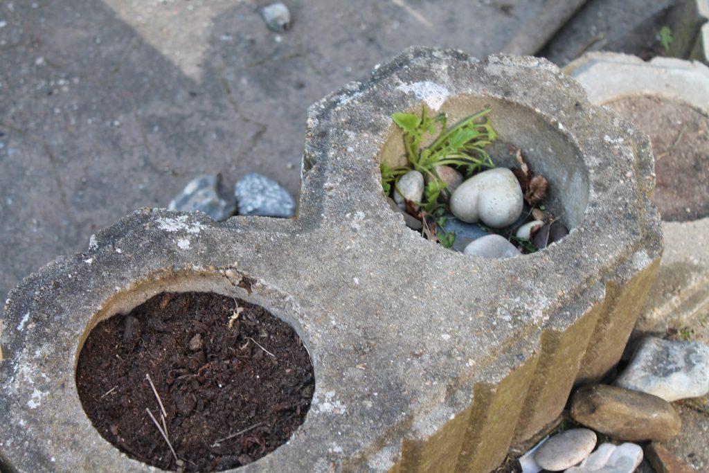 Her er plantet planter
